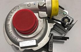 12645143 _Turbo colorado