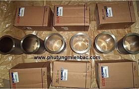 2113182000_Xylanh Hyundai 15T D6HA