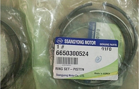 6650300524_Secmang Ssangyong actyon sport